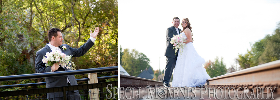 Mill Creek Park Dexter MI wedding photograph