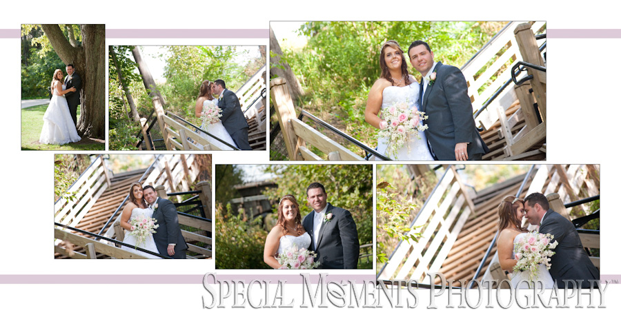 Mill Creek Park Dexter MI wedding photograph