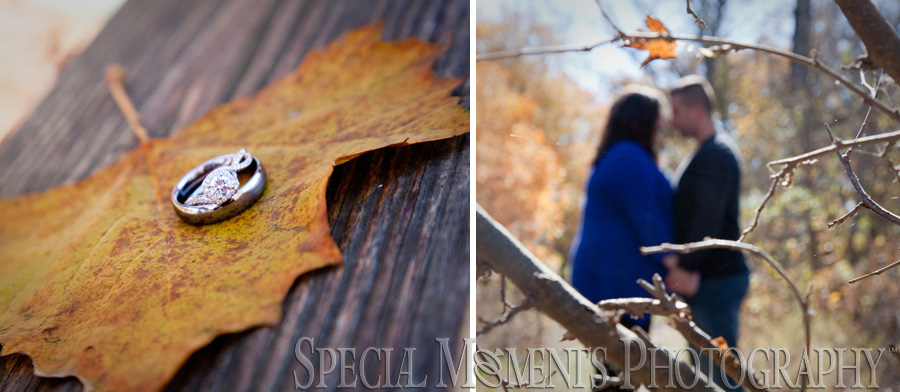 Kensington Metro Park Milford Engagement wedding photography