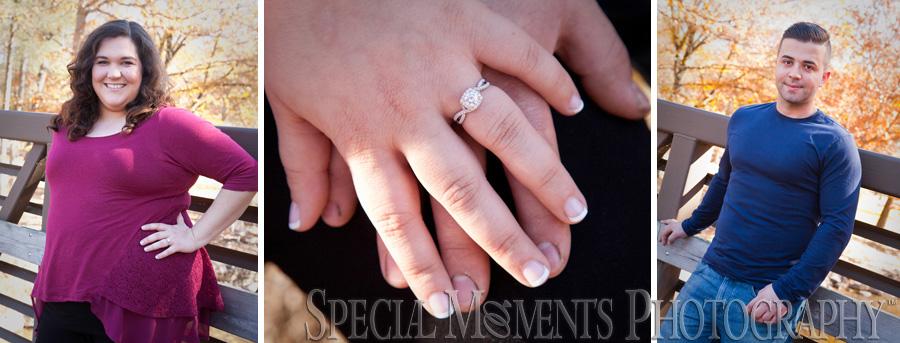 Kensington Metro Park Milford Engagenment wedding photography