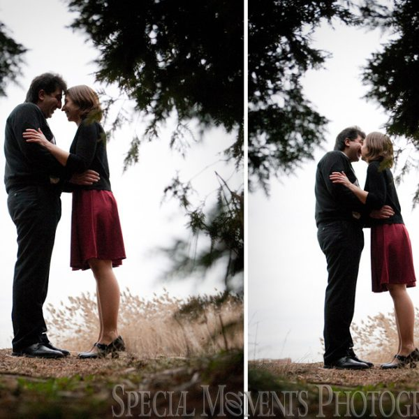 Amanda & Suren's Engagement Photos at Long Park Commerce Twp MI
