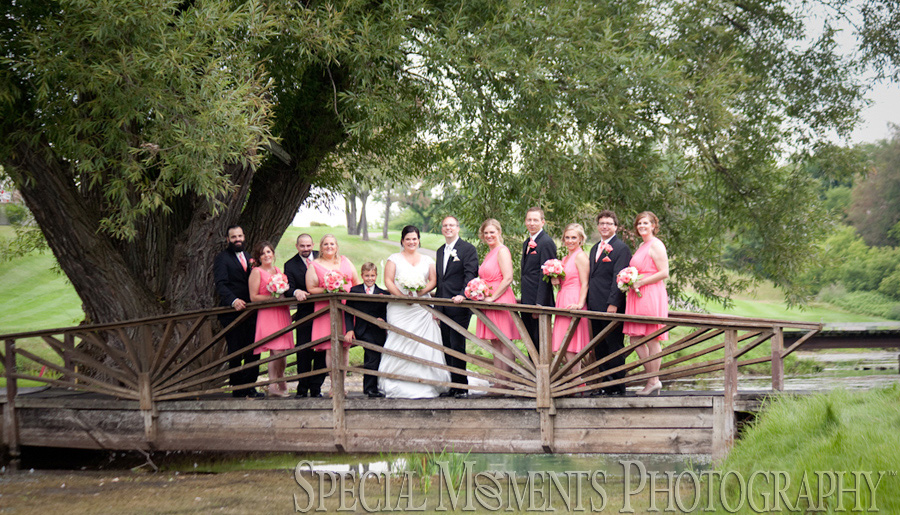 Click Image To Open Blog Post Christina Alexander S Wedding At Paint Creek Country Club In Lake Orion Micall Us Today 1 734 453 4321
