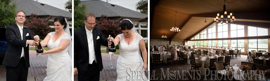 Paint Creek Country Club Lake Orion wedding photography