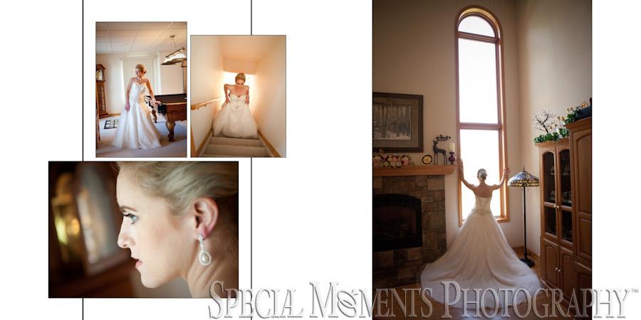 Home Wedding & Reception MI wedding photograph