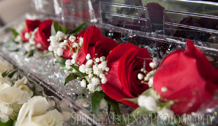 Zuccaro Banquets & Catering Chesterfield Twp. wedding photograph