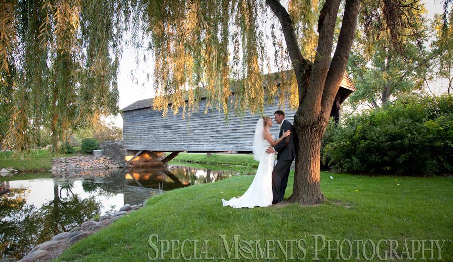 Taste of History Dearborn MI wedding photograph