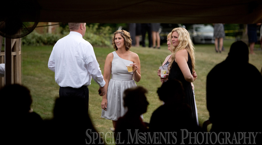 Home Wedding Reception Plymouth MI wedding photograph