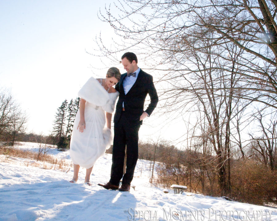Heritage Park Farmington Hill MI wedding photograph