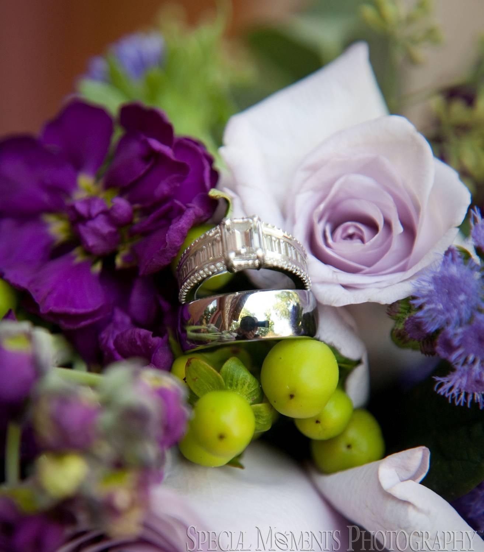 Sunset Cove Bed & Breakfast Pinckney MI wedding photography