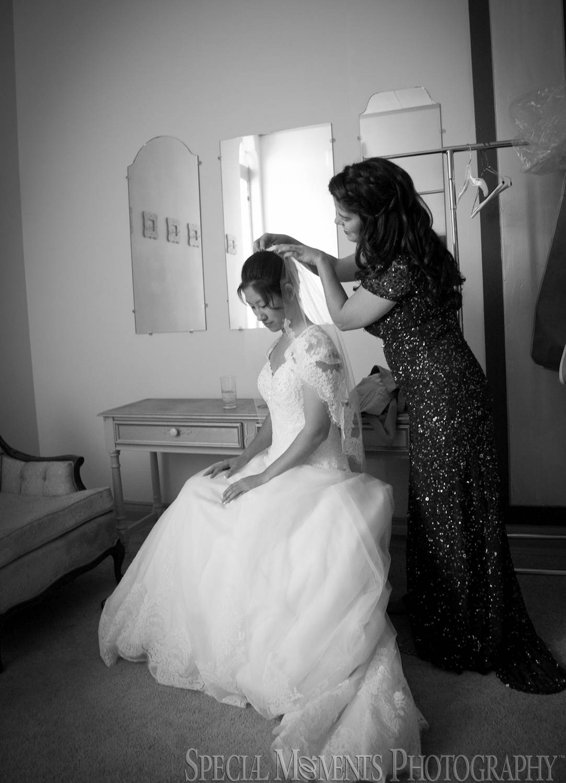 Lafayette Grande Pontiac MI wedding photography