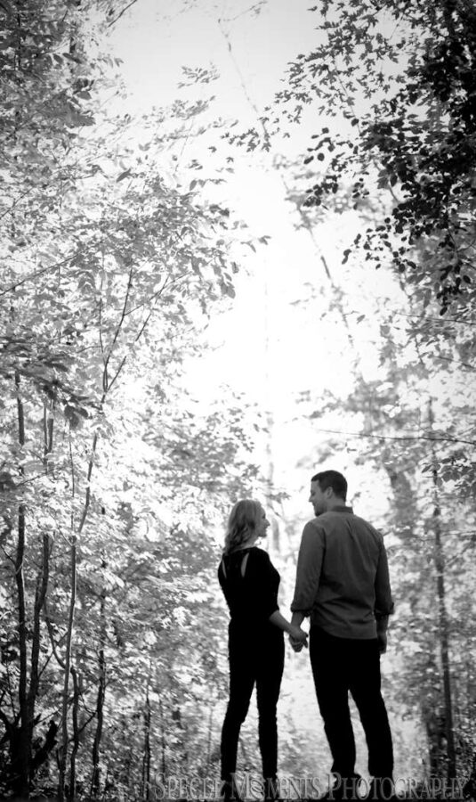 Long Park Commerce Twp. MI engagement wedding photograph