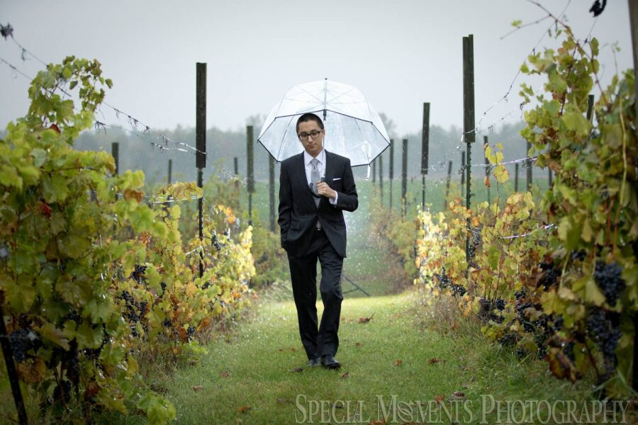 Sandhill Crane Vineyard Jackson MI wedding photograph