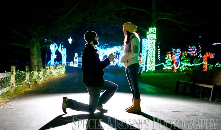 Detroit Zoo Christmas Lights Proposal wedding photograph
