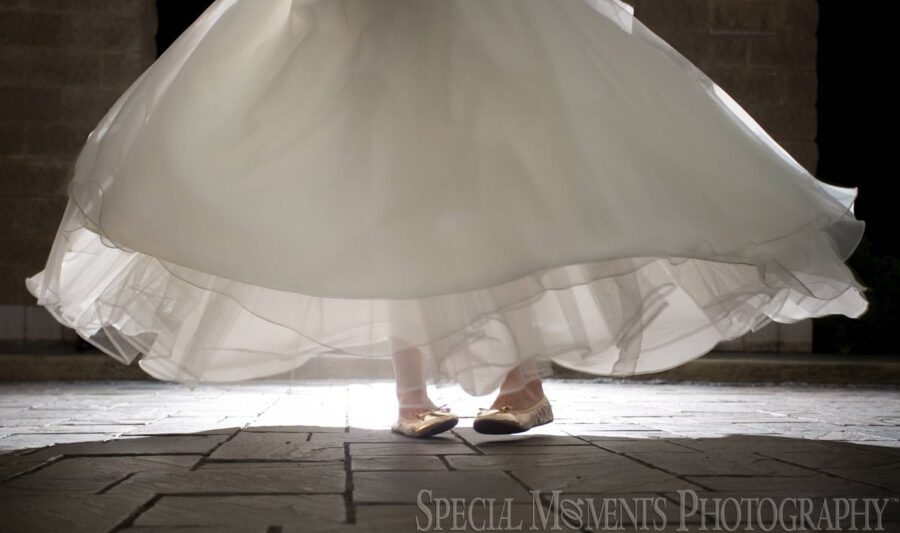 St. Mary Cultural Center Livonia MI wedding photograph