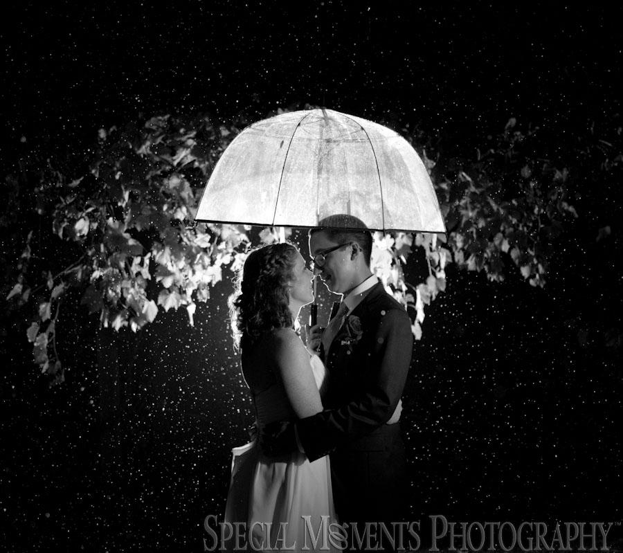 Sandhill Crane Vineyard Jackson MI wedding photograph