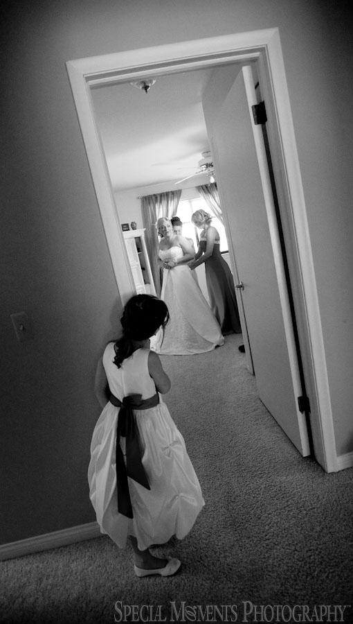 Mirage Clinton Township MI wedding