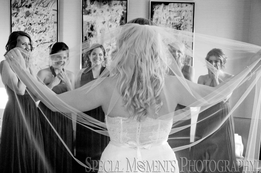 The Henry Hotel Dearborn MI wedding photograph