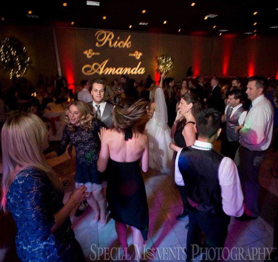 Laurel Manor - Livonia wedding photograph