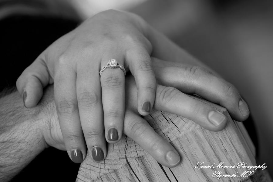 Dexter MI wedding photograph