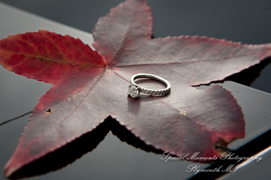 Wilcox Lake Park Plymouth MI engagement photograph